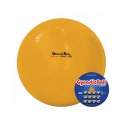 Bola para Fisioterapia e Exercícios 45cm Gynastic Ball